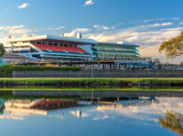 Favorites for the Melbourne Cup